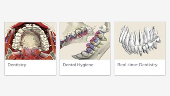 """הנושאים שנפתחו ע""""י ANATOMY TV בתחום רפואת השיניים: DENTISTRY, DENTAL HYGENE ו- REAL-TIME DENTISTRY"""